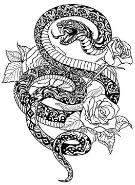 snake coiled round the roses. Angry dangerous serpent and flowers.Black and white Tattoo style or t-shirt design vector illustration