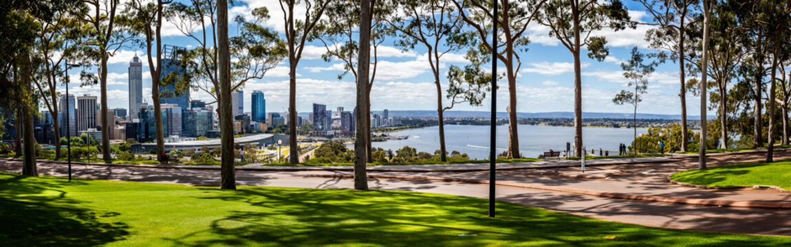 Panorama of lemon scented gum trees and Perth Central Business District from Kings Park, Perth, Australia on 25 October 2019