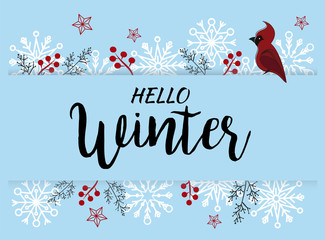 Hello Winter  vector illustration background with snowflakes. Hand writing style typography.