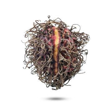 Dried rambutan