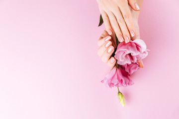 Beautiful Woman Hands with fresh eustoma. Spa and Manicure concept. Female hands with pink...