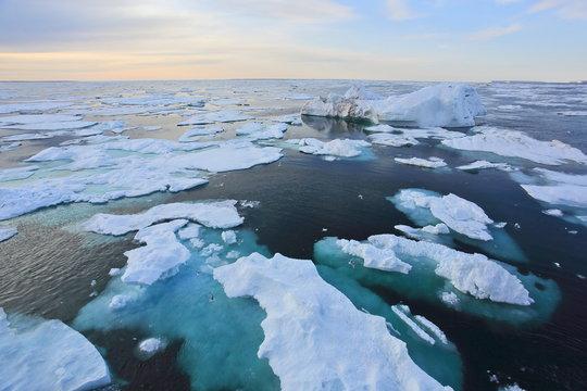 Arctic Ocean in summer time