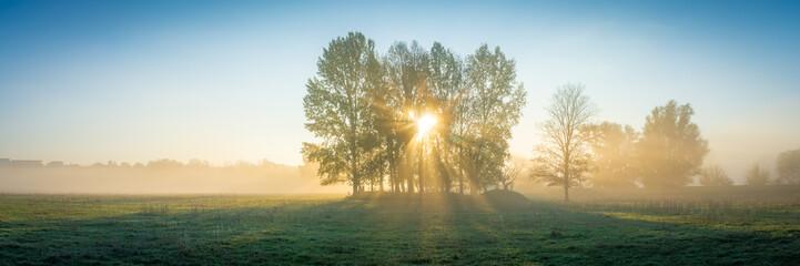 Fotobehang Blauwe hemel Die Sonne scheint durch Nebel und Bäume auf ein Feld - Panorama
