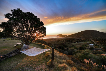 New Zealand travel, Auckland, Wellington^ fiords and islands
