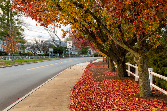 New England Small Town in the Autumn Foliage