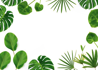 Green leaf border on white background Wall mural