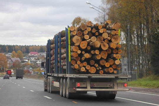 Heavy lumber truck transports logs on a semi-trailer on a suburban asphalt highway on autumn day against a gray sky  - commercial timber import in EAC, wood business