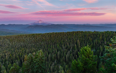 Mount Hood and Forest Sunset Fotoväggar