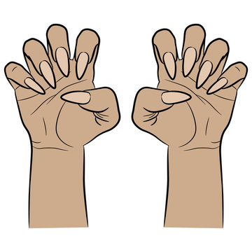 Two female hands with clenched fingers and long nails. Cartoon style.