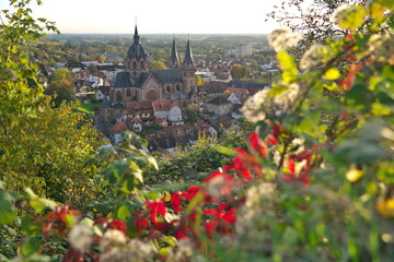 Fototapeta Blick auf Heppenheim an der Bergstraße