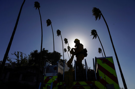 A firefighter tackling the Dexter fire rolls up hose under palm trees bending in the wind, in Riverside