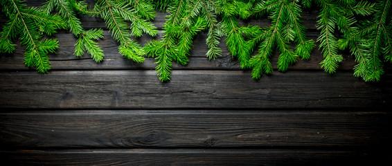 Natural Christmas tree branches.