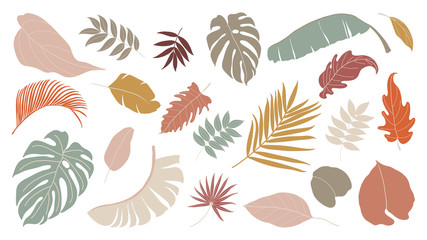 Set of abstract tropical leaves.   Abstract botanical element collection with Earth tone color. Design for natural and floral background pattern, cards and packaging, cosmetics, spa, beauty care. Wall mural