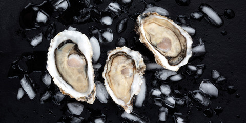 Foto op Canvas Bloemen A panorama of fresh raw oysters on ice, shot from the top on a black background
