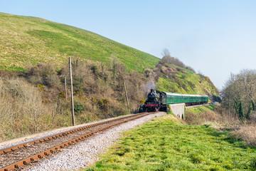 Steam Locomotive Crossing Countryside Bridge