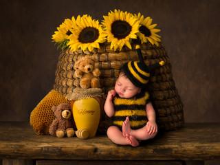 Baby bee composite