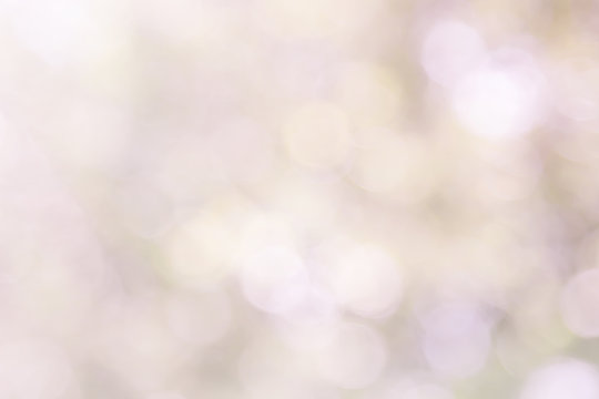 Pastel pink blur bokeh soft glitter light abstract spring background, Pink white effect background natural blurred flower at soft glitter shiny, Red In love season in from leaf and tree for valentine.