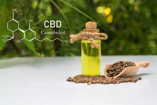 Hemp oil formula, CBD Cannabidiol in a glass bottle against Hemp plant with chemical molecule.