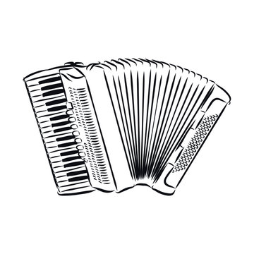 accordion isolated on white background