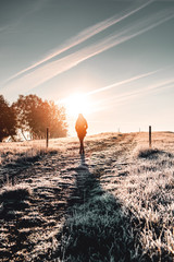 Silhouette of a girl in early morning sunlight with frozen winter nature and colorful warm sunrise in the countryside. Fresh and relax morning walk