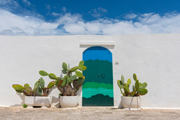 Cactus in front of white wall and mediterranean door in Ostuni, Italy.