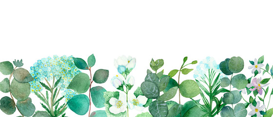Watercolor hand painted nature floral banner line with green eucalyptus branches plant, blue flower yarrow and white flower jasmine on the white background for invitations and greeting cards