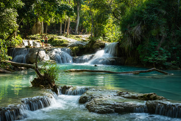 Fotobehang Watervallen Turquoise water of Kuang Si waterfall, Luang Prabang, Laos. Tropical rainforest. The beauty of nature.