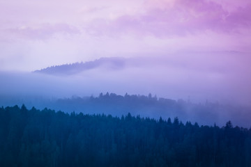 Poster Morning with fog Lanscape photo of wood mountain hills with foggy morning sky.