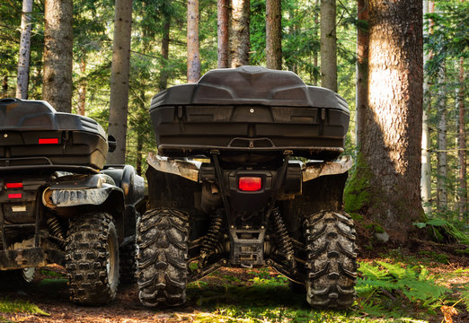 Dirty atv vehicles standing in forest rear trunk view.