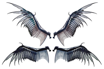 pair if dragon wings isolated on white, 3d render.
