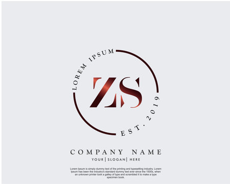 Initial letter ZS beauty handwriting logo vector