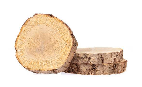 circular piece of wood section texture isolated on white background