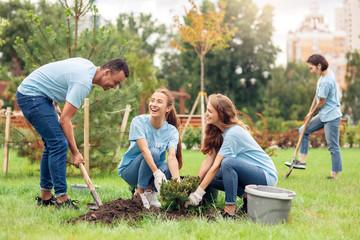 Volunteering. Young people volunteers outdoors planting trees digging ground talking cheerful - fototapety na wymiar