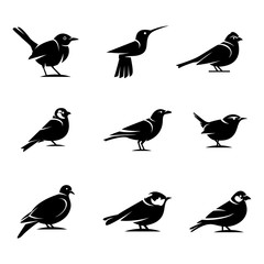 Bird silhouette Designs Concept illustration Vector Template.