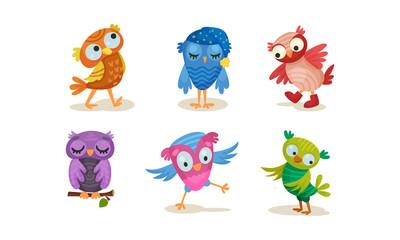 Slats personalizados com sua foto Set of cartoon colorful owls. Vector illustration on a white background.