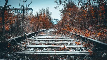 In de dag Spoorlijn Verlassene Bahnstrecke