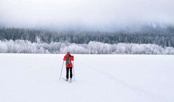 Woman skate skiing in a barren wintry wilderness of the Methow Valley, with a snow-covered pine forest in the distance - Washington, USA
