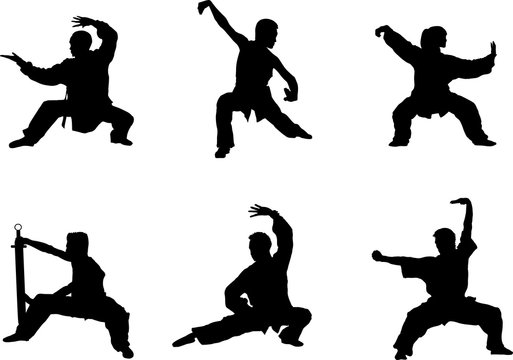 Wushu, kung fu, Taekwondo. Silhouette of people isolated on white background. Sports positions. Design elements and icons. Vector illustration.