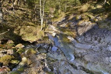 Photo sur Aluminium Rivière de la forêt Gorge in the Western Tatras, White Valley, Dolina Bialego
