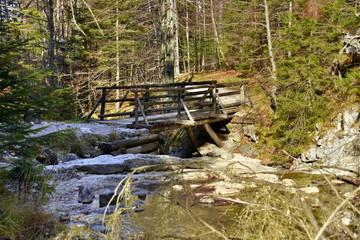 Papiers peints Rivière de la forêt Gorge in the Western Tatras, White Valley, Dolina Bialego