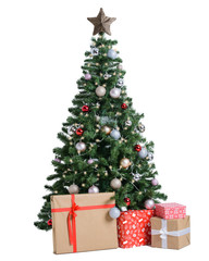 Christmas fir trees isolated on the white background