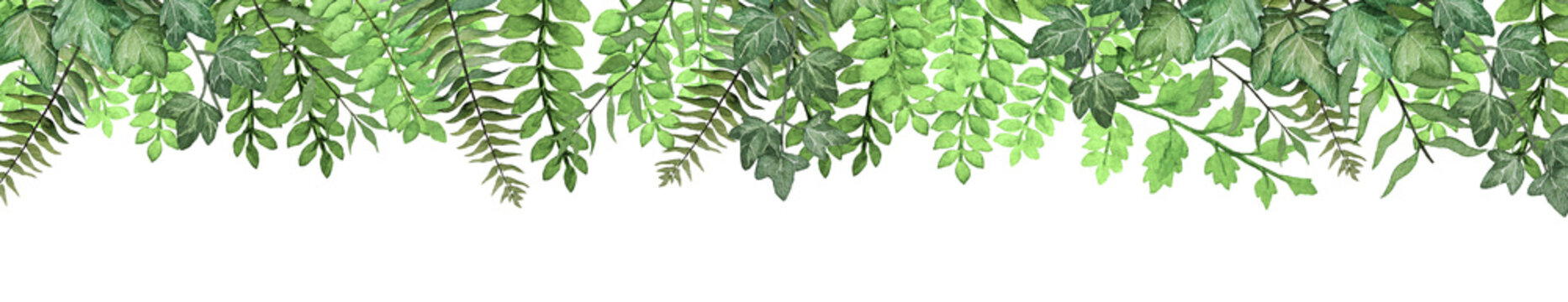 Long banner with hand drawn watercolor tropical fern leaves