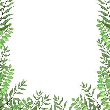 Card frame with hand drawn watercolor fern leaves