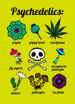 psychedelic plants: peyote, marijuana, mushrooms, psilocybin, skull, t-shirt print