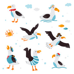 Set of funny baby pictures of albatross on a white isolated background. Vector illustration