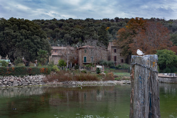 Lake shore of  island on lake Tuoro Sul Trasimeno in Italy seagull seating on pier pillar calm waters