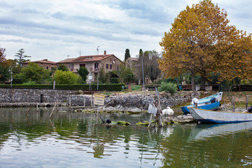 Shore with old boats and swans on lake Trasimeno in Italy