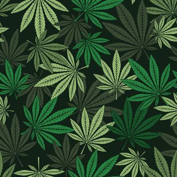 seamless pattern of marijuana leaf.