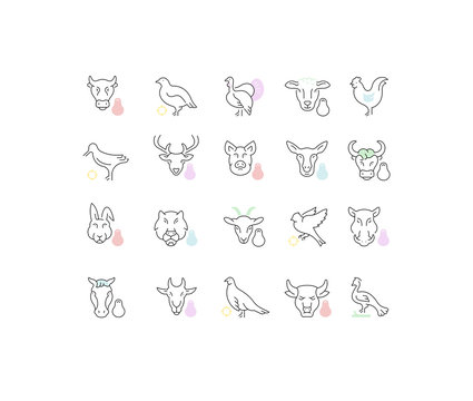 Set Vector Line Icons of Meat and Poultry.