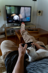 Barcelona, Spain, Man playing videogames in living room with cat on top